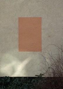 lichtenberg colours 2