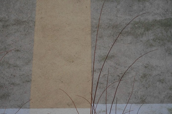 lichtenberg colours 5