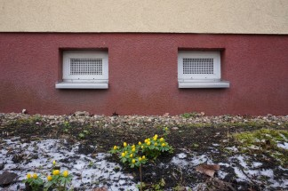 colours of lichtenberg 13