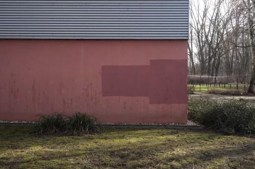 colours of lichtenberg 9