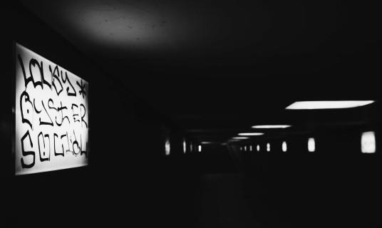 ins dunkle licht