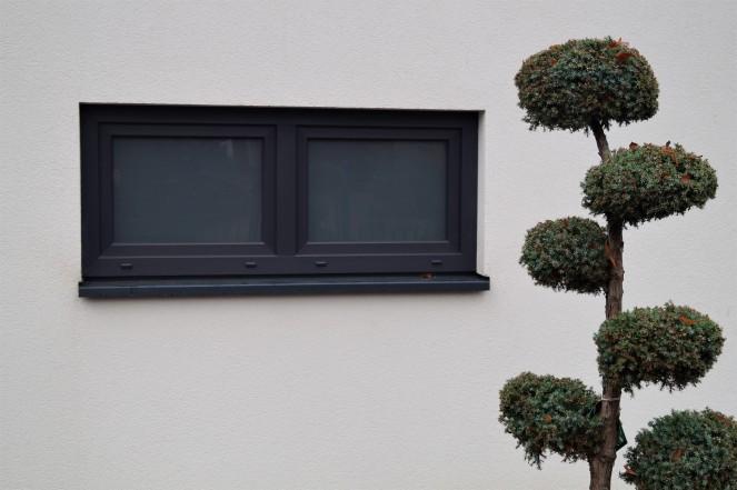 in deutschen gärten1