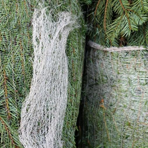 weihnachtsbaum6