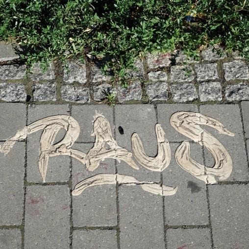 raw51